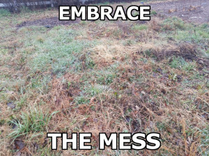 Embrace the Mess image