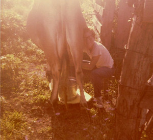 Larry early days milking