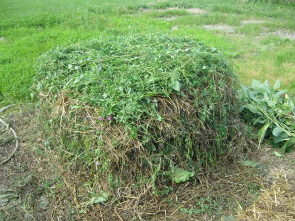 Simple Compost Making From An Expert