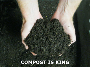 compost is king