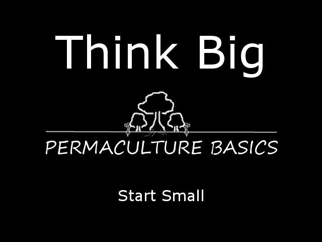 Permaculture Basics – Think Big, Start Small
